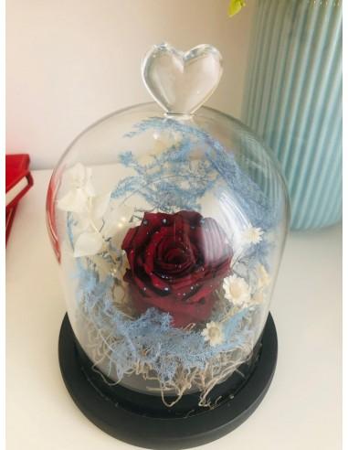 "Trandafir criogenat ""Star Dust"""