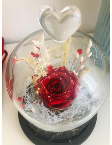 Trandafir criogenat Candy